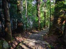 Landschap van Kumano Kodo in Kansai, Japan Stock Foto's