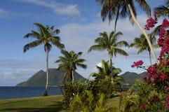 Landschap van Le Diamant in Martinique stock fotografie