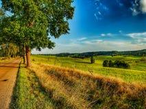 Landschap van Masuria in Polen Weg onder weiden royalty-vrije stock foto