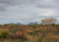 Landschap 1 van Mauritius Royalty-vrije Stock Foto