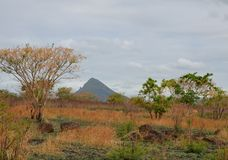 Landschap 2 van Mauritius Royalty-vrije Stock Fotografie