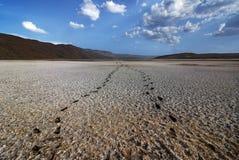 Landschap van Meer Bogoria - Kenia - Afrika Stock Afbeelding