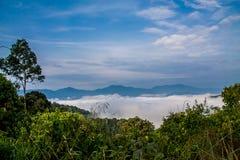 Landschap van mistwolk en berg Stock Afbeeldingen