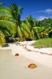 Landschap van Moorea, Franse Polynesia Stock Fotografie