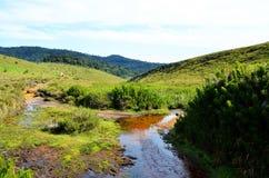 Landschap van Nationaal Park Horton Plains Stock Foto's