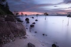Landschap van natuurlijk zandig strand Royalty-vrije Stock Afbeelding