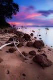 Landschap van natuurlijk zandig strand Stock Afbeeldingen