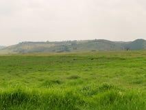Landschap van Natuurreservaat Krugersdorp Royalty-vrije Stock Foto's