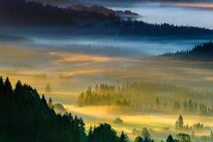 Landschap van Nevelige ochtend in de bergen, Polen Koniakow Royalty-vrije Stock Afbeeldingen