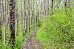 Landschap van Nixon Park in Loganville, Pennsylvania Stock Fotografie