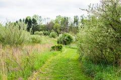 Landschap van Nixon Park in Loganville, Pennsylvania Stock Foto