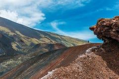 Landschap van Onderstel Etna Volcano stock foto's