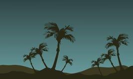 Landschap van palmsilhouet Stock Afbeeldingen