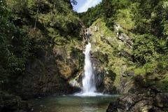 Landschap van paradijswaterval Stock Afbeelding