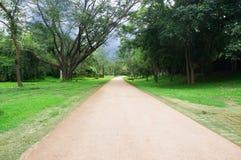 Landschap van peachful weg Royalty-vrije Stock Afbeelding