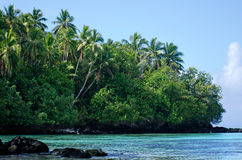 Landschap van Rapota-Eiland in Aitutaki-Lagune Cook Islands Royalty-vrije Stock Fotografie