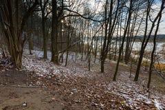 Landschap van recent herfstbos met eerste sneeuw Stock Foto