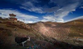 Landschap van Sedah in Ganzi, Sichuan, China royalty-vrije stock afbeeldingen