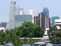 Landschap 2 van Singapore royalty-vrije stock afbeeldingen