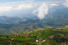 Landschap van theeaanplantingen in Haputale, Sri Lanka Stock Afbeelding