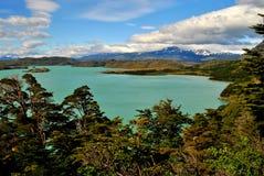 Landschap van Torres del Paine Stock Foto's