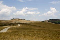 Landschap van Toscanië Royalty-vrije Stock Foto
