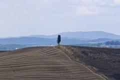 Landschap van Toscanië Stock Fotografie