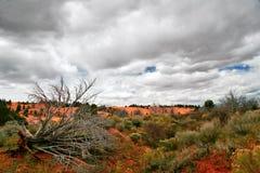 Landschap van Utah royalty-vrije stock fotografie
