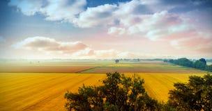 Landschap van veelvoudig grasgebied royalty-vrije stock fotografie