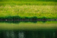 Landschap van Vijver in Groot reservoir in Thailand Royalty-vrije Stock Fotografie