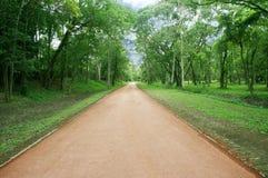 Landschap van vreedzame weg Royalty-vrije Stock Fotografie