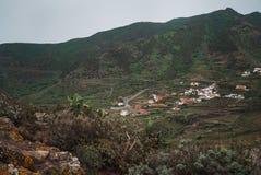 Landschap van vulkanische die bergen met droge bloemen worden behandeld en succulents royalty-vrije stock fotografie