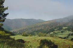 Landschap van weiden en heuvels royalty-vrije stock afbeelding