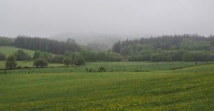 Landschap van weiden en heuvels met mist stock afbeelding