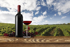 Landschap van wijngaarden met fles, glas wijn en druiven Stock Fotografie