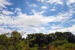 Landschap van wolken en bergen Stock Foto