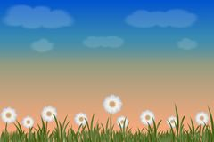 Landschap van zonsondergang en bloemwit stock illustratie