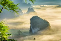 Landschap van zonsopgang op Berg in Phu Langka, Payao-Provincie, Thailand royalty-vrije stock afbeeldingen