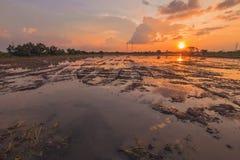 Landschap van zonsopgangzonsondergang over een landbouwbedrijfgebied na de onderbrekingen die van de oogstzon door wolken tot bez royalty-vrije stock foto's