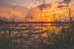 Landschap van zonsopgangzonsondergang over een landbouwbedrijfgebied na de onderbrekingen die van de oogstzon door wolken tot bez stock afbeeldingen