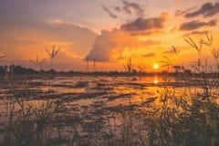Landschap van zonsopgangzonsondergang over een landbouwbedrijfgebied na de onderbrekingen die van de oogstzon door wolken tot bez stock foto's