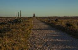 Landschap van Zuidelijk Portugal, algarve gebied Stock Fotografie