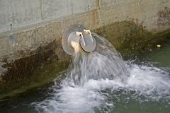 Landschap waterpipe Stock Afbeeldingen
