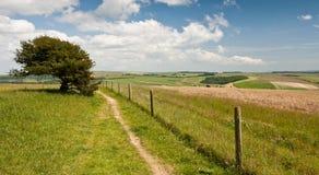 Landschap in West-Sussex Stock Fotografie