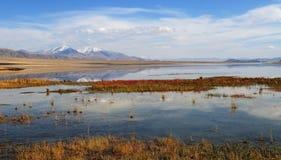 Landschap in Westelijk Mongolië stock foto