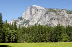 Landschap in Yosemite royalty-vrije stock foto