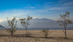 Landschap in zacht blauw Visnetten, met installaties worden verfraaid die Meer Kerkini, Griekenland stock afbeeldingen