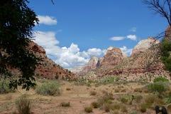 Landschap in Zion National Park Stock Foto