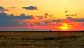 Landschap, zonnige dageraad Royalty-vrije Stock Afbeeldingen