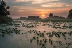 Landschap, zonnige dageraad, zonnestralen in mist Royalty-vrije Stock Foto's